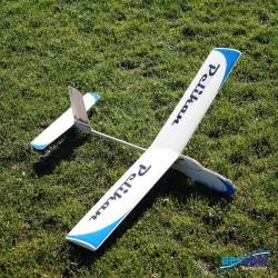 2010 Pelikan Freiflugmodell Laser -Holzbausatz_253